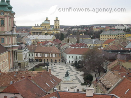 Eger Hungary  city photo : Eger Hungary Current Offers and Discounts | Sunflowers
